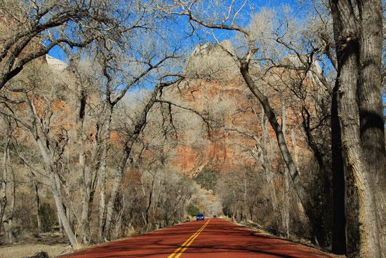 road-through-zion-canyon1
